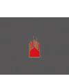 WSiIZ-Logo